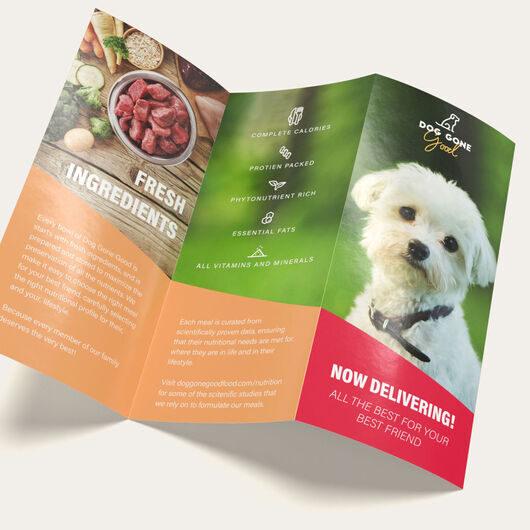 6 Panel Fold Brochures